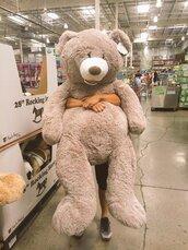 home accessory,teddy bear,giant teddy bear,giant bear,giant,cute,cuddle
