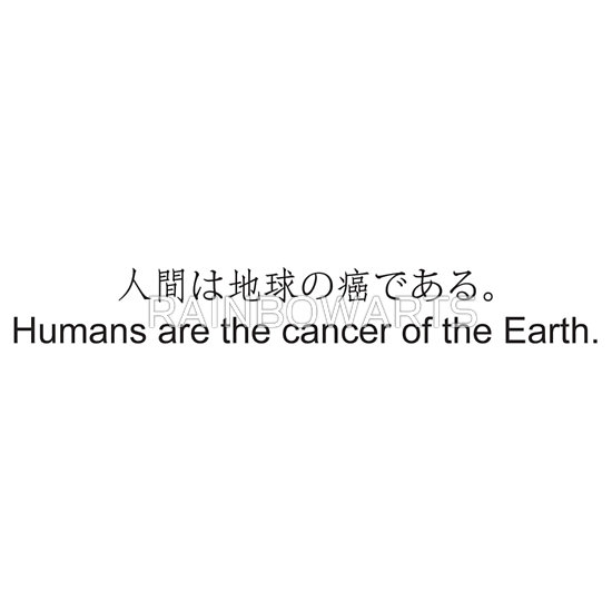 The connection between earth and humans essay