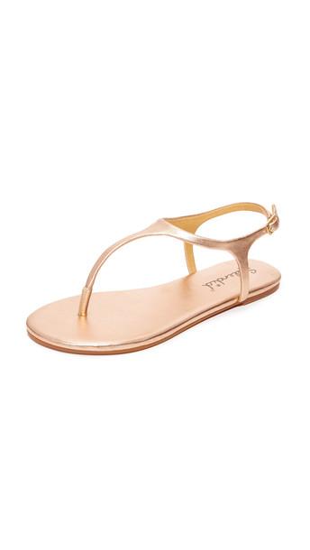 Splendid Mason Thong Sandals - Rose Gold