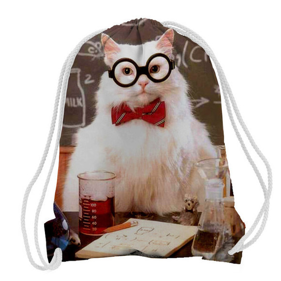 funny bag cats science fashion