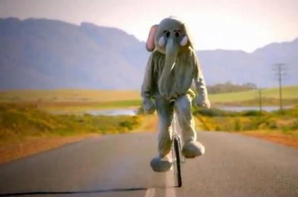 elephant jumpsuit costume halloween costume onesie