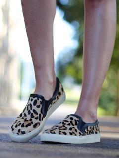 Leopard pony plimsolls