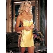 underwear,evasintimates,evasunderklader,lingerie,chemise,lingeries evening dress