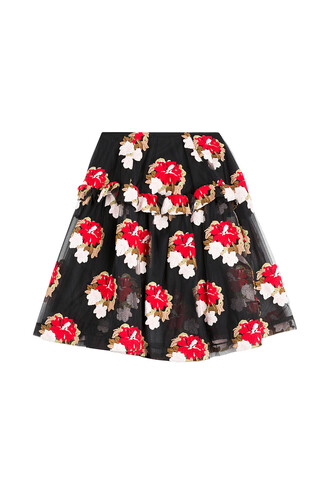 skirt tulle skirt embroidered