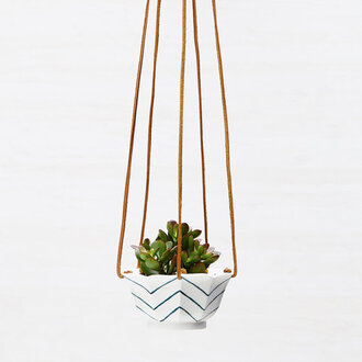 home accessory terrarium plants cactus chevron hipster beach house
