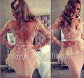 gown city dresses Picture - More Detailed Picture about Hot Myriam Fares Friend Tube Deep V Neck Long Sleeves Lace Flowers Ruffles Open Back Knee Length Celebrity Evening Dresses Gowns Picture in Celebrity-Inspired Dresses from my classic garden | Aliexpress.com | Alibaba Group