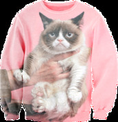 sweater,cats,grumpy,pink,not happy,jumper,swag,tumblr,tumblr girl,cute,angry,hand,grumpy cat,sexy sweater,fusion clothing,fusion sexy sweaters,original sexy sweaters,fusion sweatshirts,printed sweater,full printed clothing,crewneck,animals