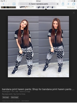 pants harem bandana print long