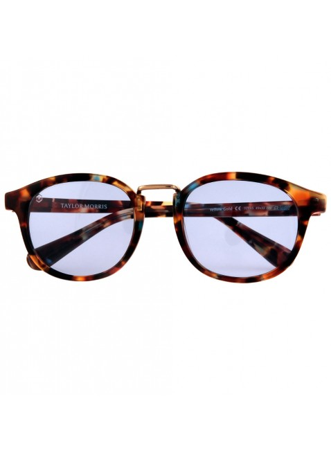 Taylor Morris Eyewear - Contemporary British Style -  Vredefort - Collection