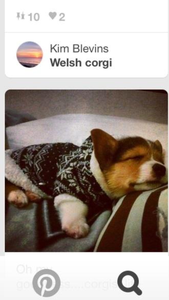 black and white sweater christmas christmas sweater dog puppy corgo welsh corgi sleeping style animal clothing