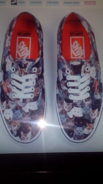 shoes vans kitties