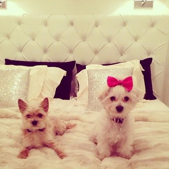 pillow sparkle