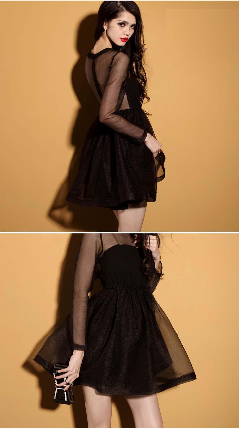 Vintage Black Opulent Mesh A-Line Dress [FXBI00523] - PersunMall.com