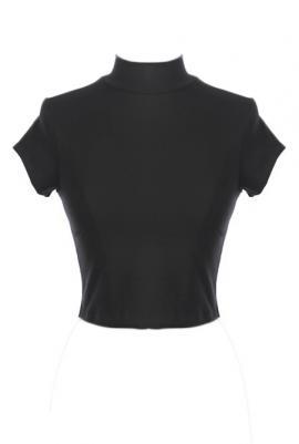 Quintessentially swift high neck short sleeve crop top in black