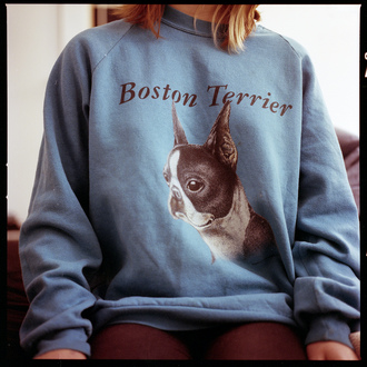 sweater boston terrier crewneck blue cartoon typography dog