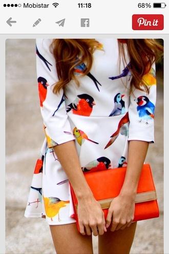 white dress birds orange