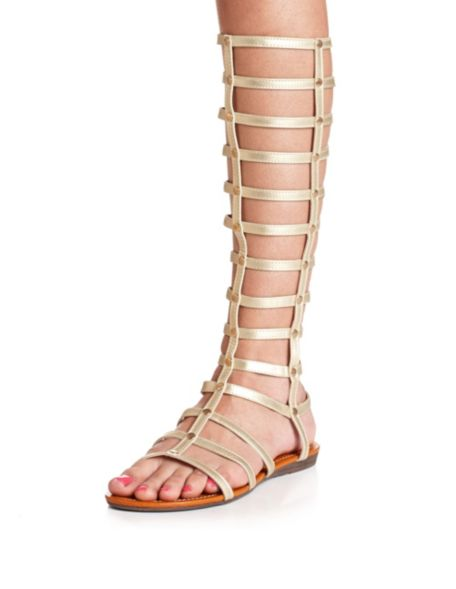 Studded Metallic Knee-High Gladiator Sandal: Charlotte Russe