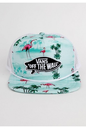 hat mens cap vans flamingo snapback