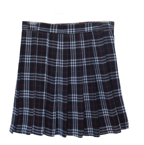 blue plaid pleated skirt