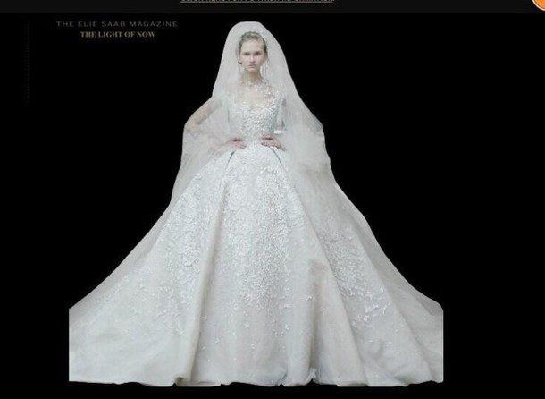 Luxury wedding dresses elie saab lace applique bridal