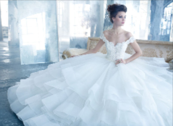dress wedding dress puffy two strap tulle