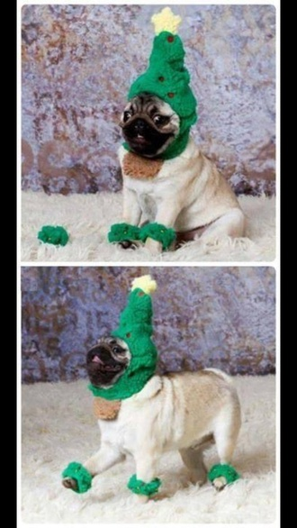 hat green green christmas dog pug animal clothing