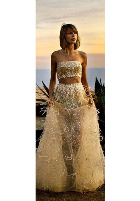 Taylor Swift Two Piece Gold Sequin Tulle Feather Dress