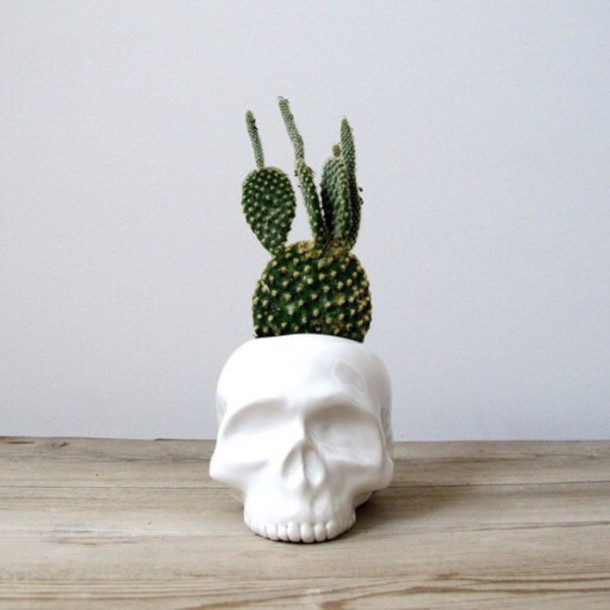 home accessory skull planter skull plants terrarium hipster
