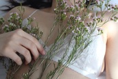 underwear,top,lace,tumblr,hipster,indie,summer,bralette,bra,lace top,tank top,flowers,hippie,nature,pale,skin,white lace,white
