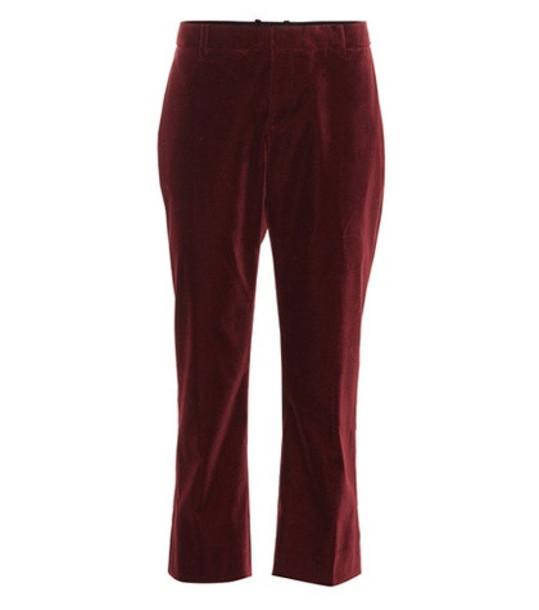 Saint Laurent Cropped velvet pants in red