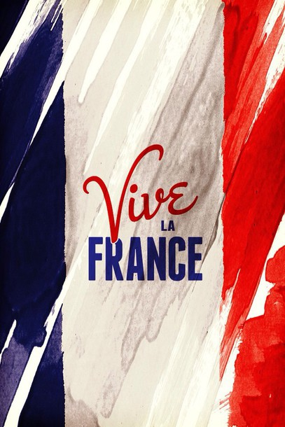 home accessory french flag
