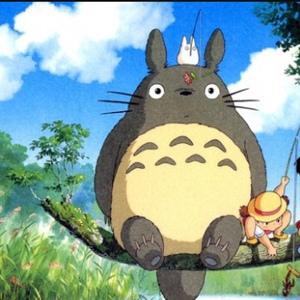Totoro.XD