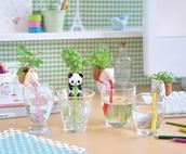 home accessory,plants,green,panda,water bottle,pot,kawaii