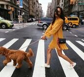 dress,yellow,yellow dress,long sleeves,sleeves,summer,mini dress,dog
