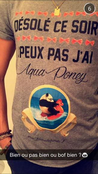 funny mens t-shirt t-shirt horse joke chevalier panda aqua french