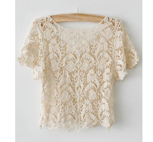 Lace hollow out shirt top blouse / fanewant