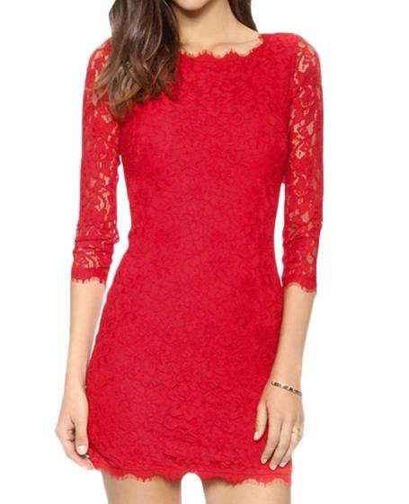 Back zipped slim lace dress