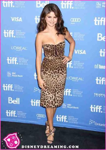 dress leopard print leopard print dress