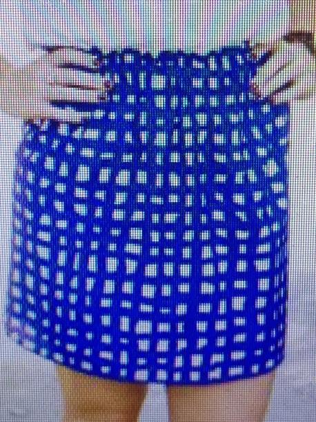 skirt gingham blue
