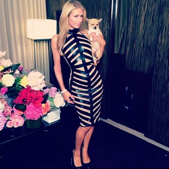 dress bandage dress bodycon stripes paris hilton celebrity style