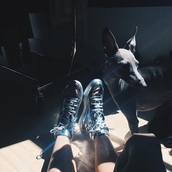 shoes,sneakers,metallic,mirror