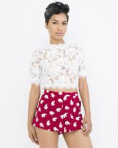shorts,burgundy,burgundy shorts,elephant,elephant print,elephant print shorts,flutter shorts