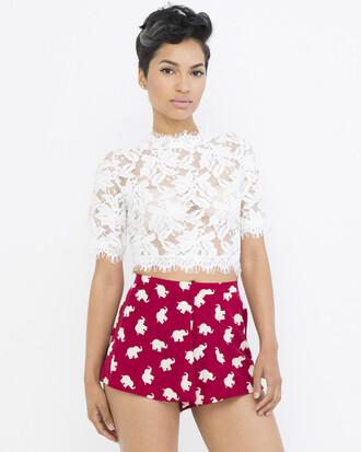 shorts burgundy burgundy shorts elephant elephant print elephant print shorts flutter shorts