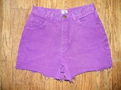 shorts,purple