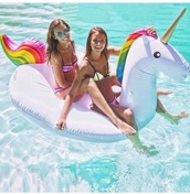 home accessory,swim floats,floats,pool float,swan float