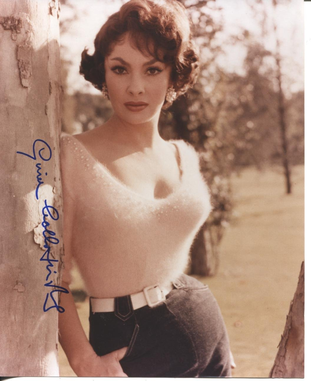 * GINA LOLLOBRIGIDA * sexy fuzzy sweater signed 8x10 photo ...