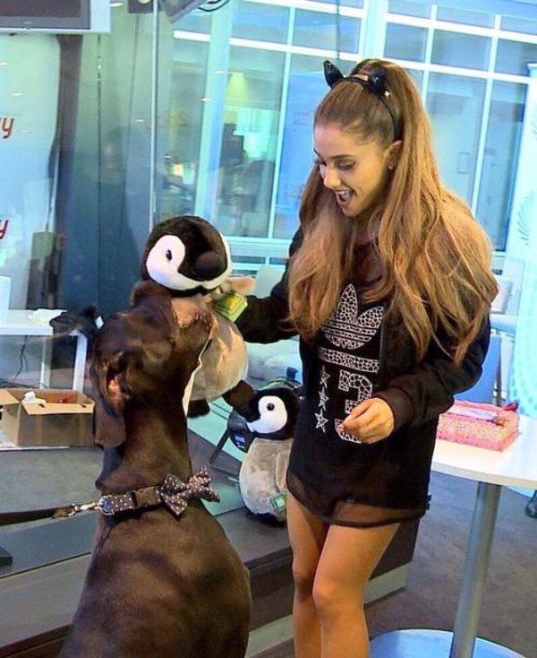 dress ariana grande sportswear