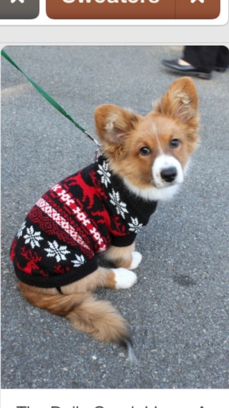christmas christmas sweater dog corgi style holiday gift beautymanifesto animal animal clothing