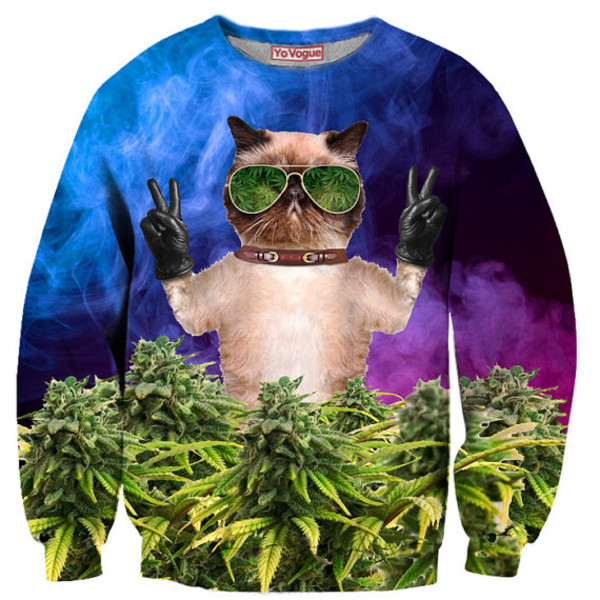 sweater swag crewneck animal cool fashion weed dope marijuana grumpy cat menswear colorful cats girl skater grumpy cat sweater hipster hippie peace sign blue tumblr tumblr girl tumblr clothes tumblr sweater alternative gangsta festival fall sweater