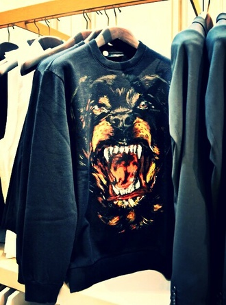 rottweiler dog sweater nice